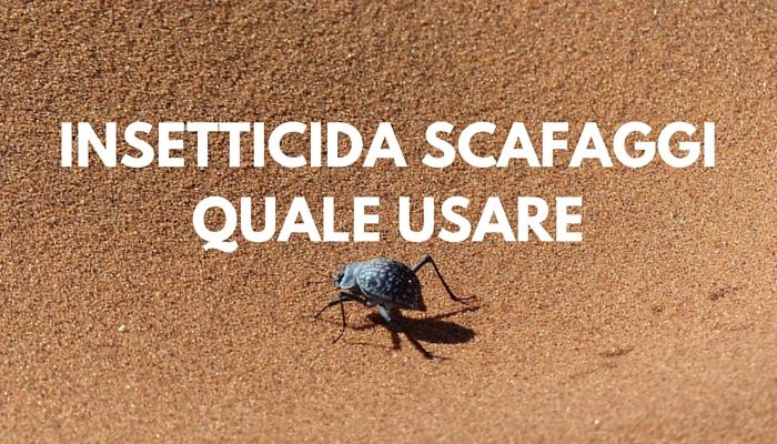 insetticida scarafaggi casa